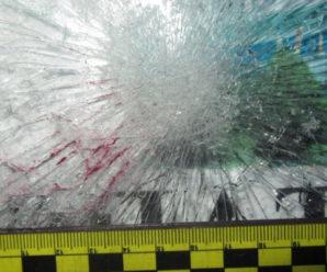 На Прикарпатті пасажирський автобус збив пішохода (фото)