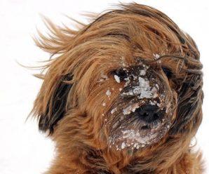 """""""Не піддавайтеся!"""": синоптик попередила про погіршення погоди"""