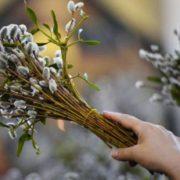 Підготуйтесь завчасу: Вербна неділя – велике свято. Що важливо робити в цей день