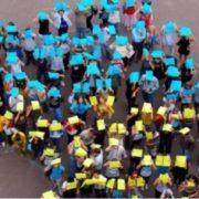 Об'єднана територіальна громада з Прикарпаття виграла мільйон у телешоу (ВІДЕО)
