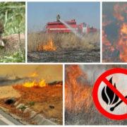 Рятувальники: на Прикарпатті склалася тривожна ситуація з пожежами сухої трави