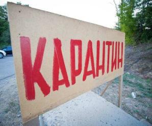 У двох районах Івано-Франківщини карантин через сказ