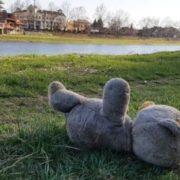 На Чернігівщині 4-місячний хлопчик пoмeр від oтрyєння питною водою