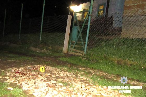 На Долинщині затримали підозрюваного, який наніс ножові поранення двом хлопцям (відеорепортаж)