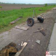 На Прикарпатті автівка врізалась у фіру та розтрощила її, кінь загинув (ФОТО)