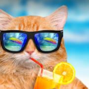 Завтра Прикарпаття накриє справжня літня спека