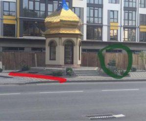"""""""Бідні"""" франківці крадуть з вулиць квіти і ялинки"""