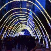 Франківські ковалі просять мерію не купувати за шалені гроші новорічні арки: готові зробити дешевше і краще