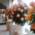 На квіткових плантаціях: дівчина з Чорткова, вирішила поділитися своїми враженнями від заробітків в Польщі