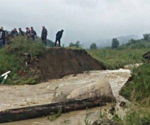 Десятки грибників на Буковині стали заручниками стихії, через зруйнований міст(відео)