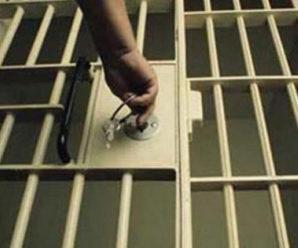 Майже 10 років тюрми чекає на прикарпатця, який вбив матір