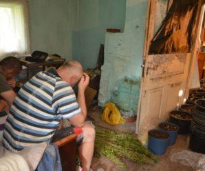 На Прикарпатті затримали озброєну банду братів-наркоторговців (Фото)