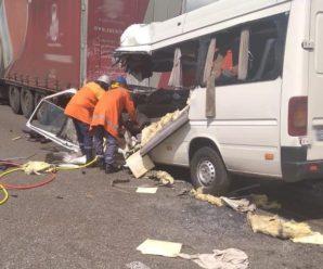 Серед 10 загиблих внаслідок ДТП на Житомирщині – одна дитина та водій маршрутки (фото)
