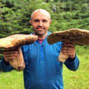 Гриби-велетні: мешканець Прикарпаття похизувався трофеями, які знайшов у лісі. ФОТО