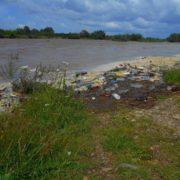 Велика вода винесла на берег Лімниці сотні пластикових пляшок. ФОТО