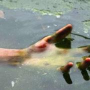 На Бистриці Надвірнянській виявили тіло потопельника