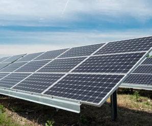 Фірми помічника депутата отримали у Франківську 50 гектарів під сонячні електростанції