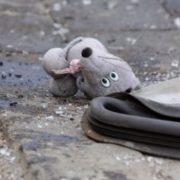 У місті на Львівщині авто переламало череп 7-річній дівчинці