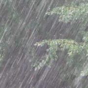 Прикарпатців попереджають про сильні зливи та підйоми рівнів води у річках