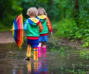 """""""Дощ та грози"""": Синоптики розповіли, яку погоду слід очікувати 15 липня"""