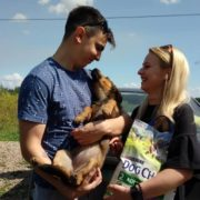 Молодята з Франківська витратили весільні гроші на корм для безпритульних тварин (ФОТО)