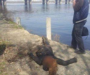 В прикарпатському містечку, із гірської річки, витягнули тіло невідомої жінки