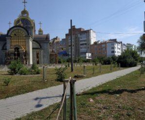 У Франківську на перехресті в Пасічній вандали зламали кілька десятків молодих дерев. ФОТОФАКТ