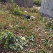 В Івано-Франківську бомжі зробили собі притулок біля дитсадка, де гуляють діти і змушені бачити це жахіття (фотофакт)
