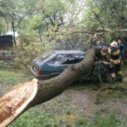 У Тисмениці автівка в'їхала в дерево. Є потерпілі