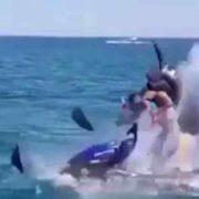 Ця розвага може стати смертельною: у Чорному морі гідроцикл з дитиною злетів на повітря (відео)