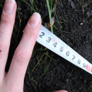 На Прикарпатті фермерське господарство незаконно користувалося землею вартістю понад 2 млн.грн.