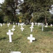 У Галичі десятки прикарпатців прибирали військовий цвинтар (фото)