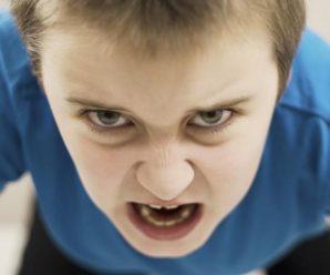 В Івано-Франківську продовжують притягувати до адмінвідповідальності батьків, діти яких хуліганять у школах