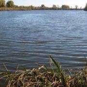 На Прикарпатті у річці втопилась жінка