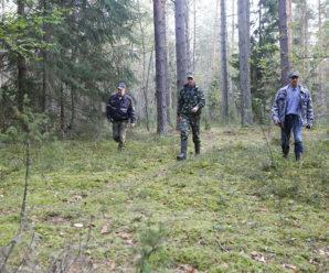 На Прикарпатті продовжують пошуки грибника, котрий зник ще у вересні