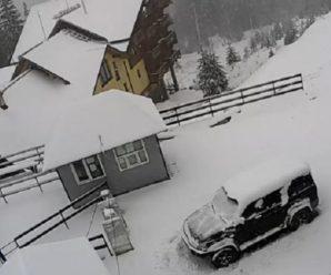 У Карпатах – повноцінна зима: вражаючі фото, відео