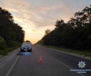 На Прикарпатті під колесами автомобіля загинув чоловік
