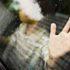 У Києві викpaли 10-річного хлопчика