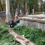 У Коломиї на кладовищі любителі збирають гриби
