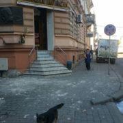 У центрі Франківська людям на голови знову обвалюються фасади будинків (фото)