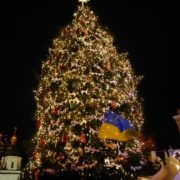 На новорічну ялинку в Прикарпатті витратять 100 тисяч гривень