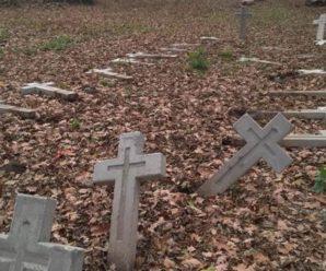 Нічого святого: На Прикарпатті вандали понівечили хрести на польському цвинтарі