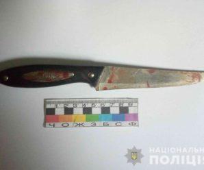 У Нікополі хлопець 18 разів встромив ножа у 13-річну сестру через комп'ютер