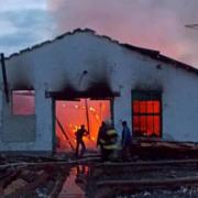 На Прикарпатті злочинець вбив двох собак, а потім спалив пилораму