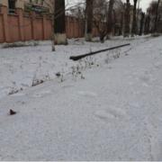 У одному з міст України випав чорний сніг: промовисті фото