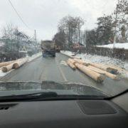 """На Прикарпатті водій лісовоза """"загубив"""" свій вантаж посеред дороги (ФОТО)"""