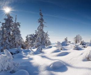 У Карпатах висота снігового покриву досягла 40 см