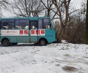 У місті Калуш через ожеледицю пасажирський автобус занесло у дерево