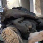 Терористи повідомили про героїчну смерть бійця прикарпатської бригади «едельвейсів»