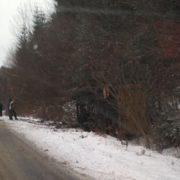На Прикарпатті вантажівка злетіла в кювет і перекинулась (ФОТО)